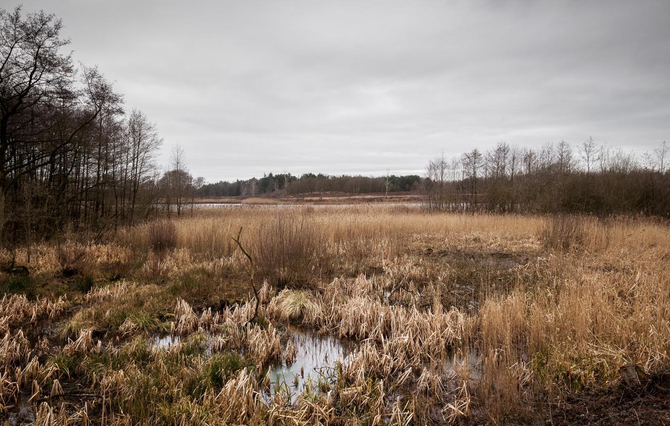 OO2903_locatie ©Tim Van de Velde