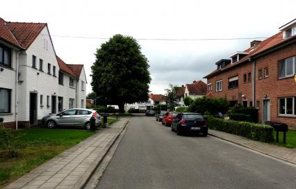 Heverlee - Ter Elstwijk - Sint-Jorislaan. fotograaf: Elise Hooft, bron: Onroerend Erfgoed
