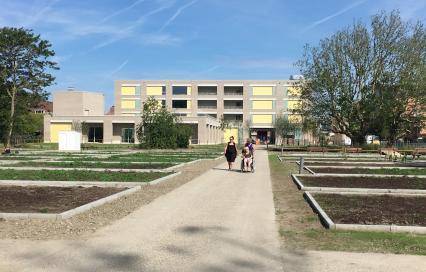 Masterplan Park De Nieuwe Koers en WZC De Drie Platanen in Oostende gerealiseerd