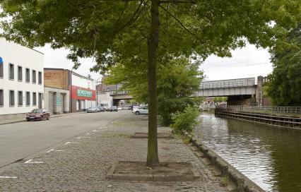 Boom op kade in Aalst
