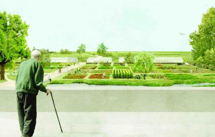 Catherine Pyck - masterplan park nieuwe koers - beeld buurttuin